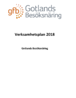 Verksamhetsplan 2018GFB